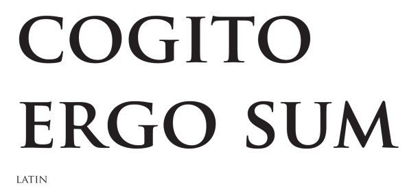 cogitto_ergo_sum